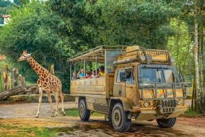 Chessington World of Adventures Resort: Entrance Ticket