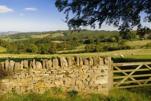 From London: Full-Day Tour of the Cotswolds