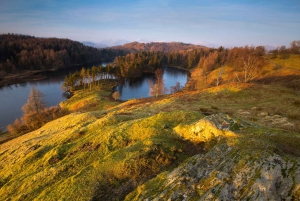 From London: Lake District Tour with Cream Tea & Cruise