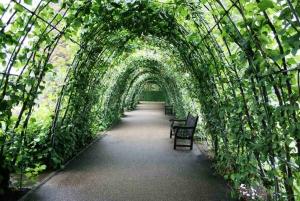 London: Kensington Palace Gardens Tour with Royal High Tea