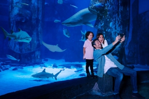 London: More London for Less 5 Attractions Pass
