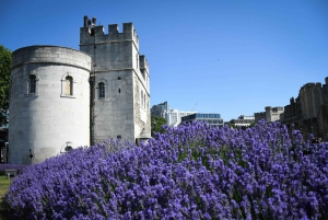 London: Top 20 Sights Walking Tour and Clink Prison Entry
