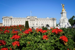 London: Top 30 Sights Walking Tour and River Cruise