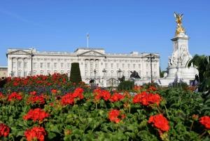 London: Top 30 Sights Walking Tour and Tower Bridge Exhibit