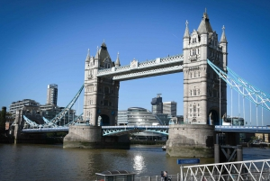 London: Top 30 Sights Walking Tour and Tower of London Entry