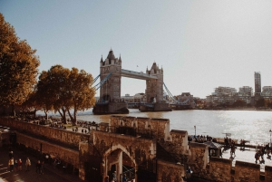 London: Tower of London Visit and Cruise in Spanish
