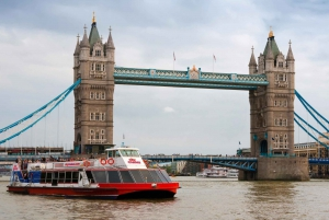 London: Westminster Tour, River Cruise, and Tower of London
