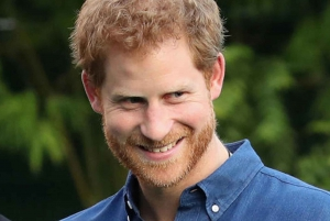 Private Prince Harry Walking Tour of London