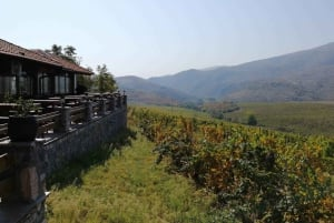 From Skopje: Private Tour of Chateau Sopot Winery with Lunch