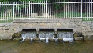 The Biljanini Springs