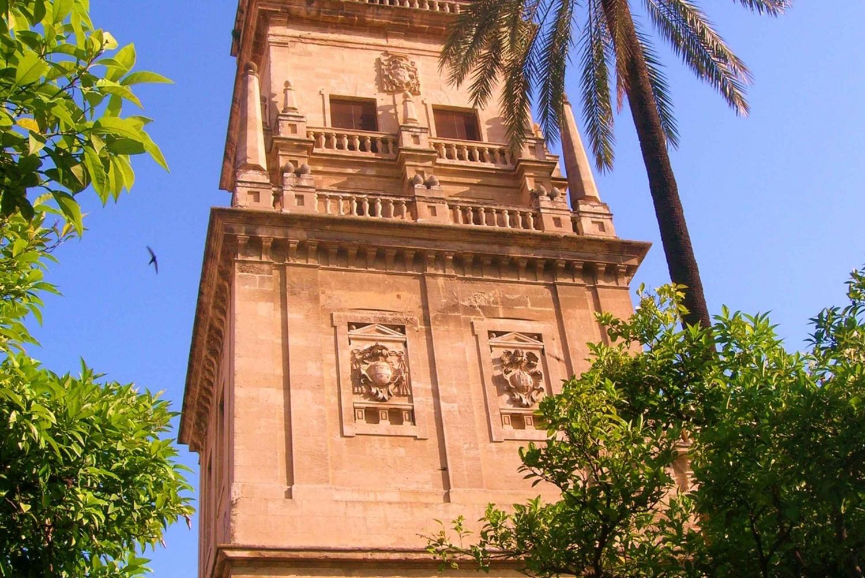 3-Day Cordoba, Sevilla and Costa del Sol Tour from Madrid