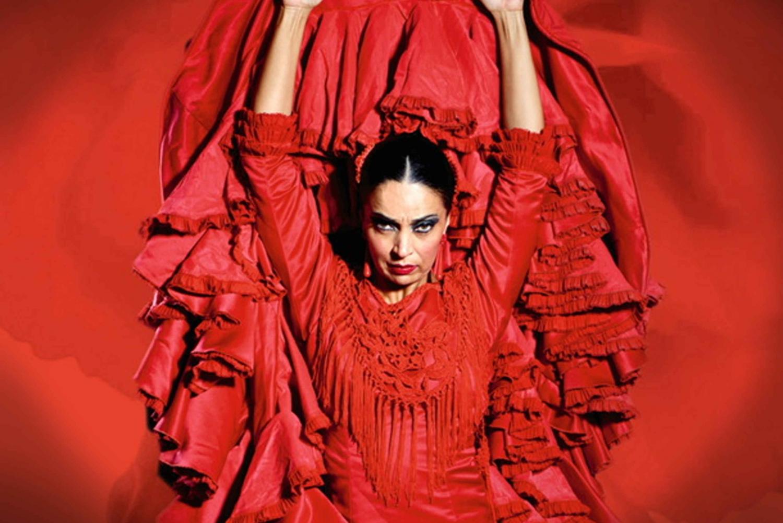 'Emociones' Live Flamenco Performance