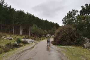 From Day Trip to Guadarrama National Park