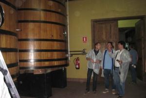 Full Day Guided Tour to Ribera de Duero