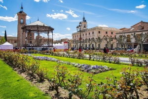 Half-Day Alcalá de Henares Tour