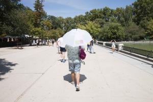 Madrid: 1.5-Hour Retiro Park Guided Walking Tour