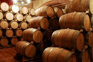 Madrid: Half-Day Winery Tour with Tasting