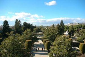 Madrid: Hapsburgs and Royal Palace Guided Tour