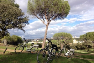 Madrid's River Side & Casa de Campo Electric Bike Tour