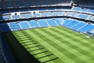 Panoramic Madrid and Bernabeu Stadium Tour