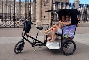 Pedicab Tour of Historical Landmarks