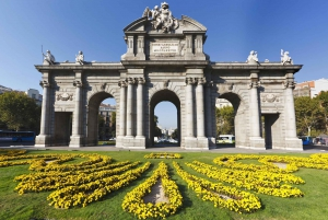 Private Custom City Tour with Guide and Chauffeur