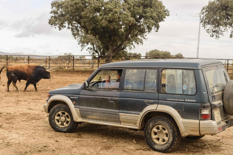 Toledo: 4WD Spanish Tasting Experience Farm Tour