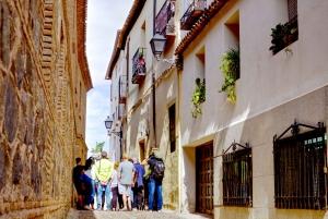 Toledo Half-Day Tour from Madrid