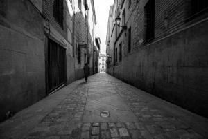Walking Tour Madrid and San Miguel Market