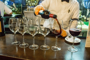 Wine and Tapas in Madrid: 2.5 Hour Tour