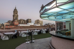 Hotel Larios Roof Terrace