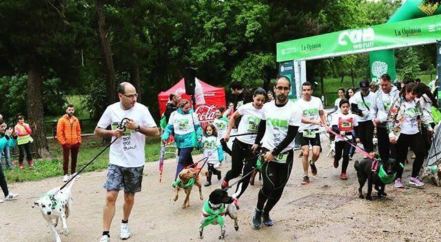 Can We Run Málaga: Carrera por Málaga para perros y sus dueños