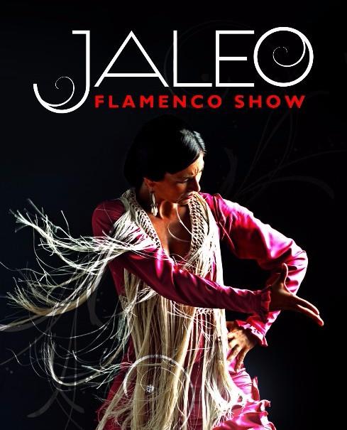 Jaleo Flamenco Show