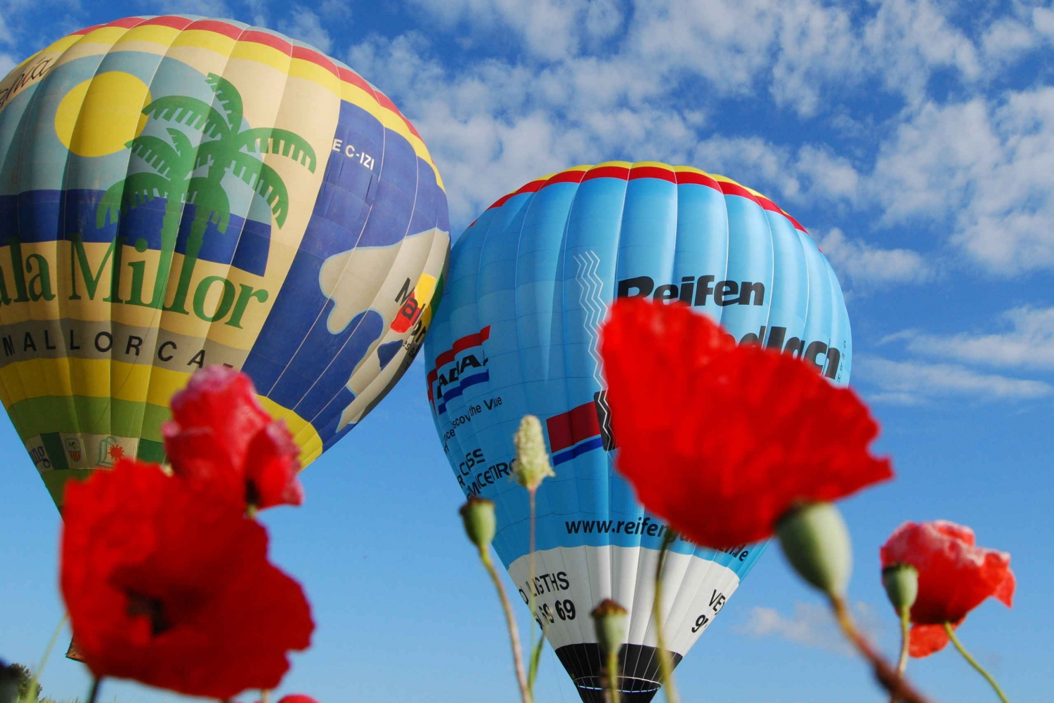 1-Hour Hot Air Balloon Flight in Mallorca