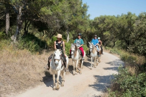 2-Hour Mountain Horse Riding Experience