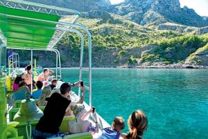 3-Hour East Coast Caves and Coastline Boat Trip
