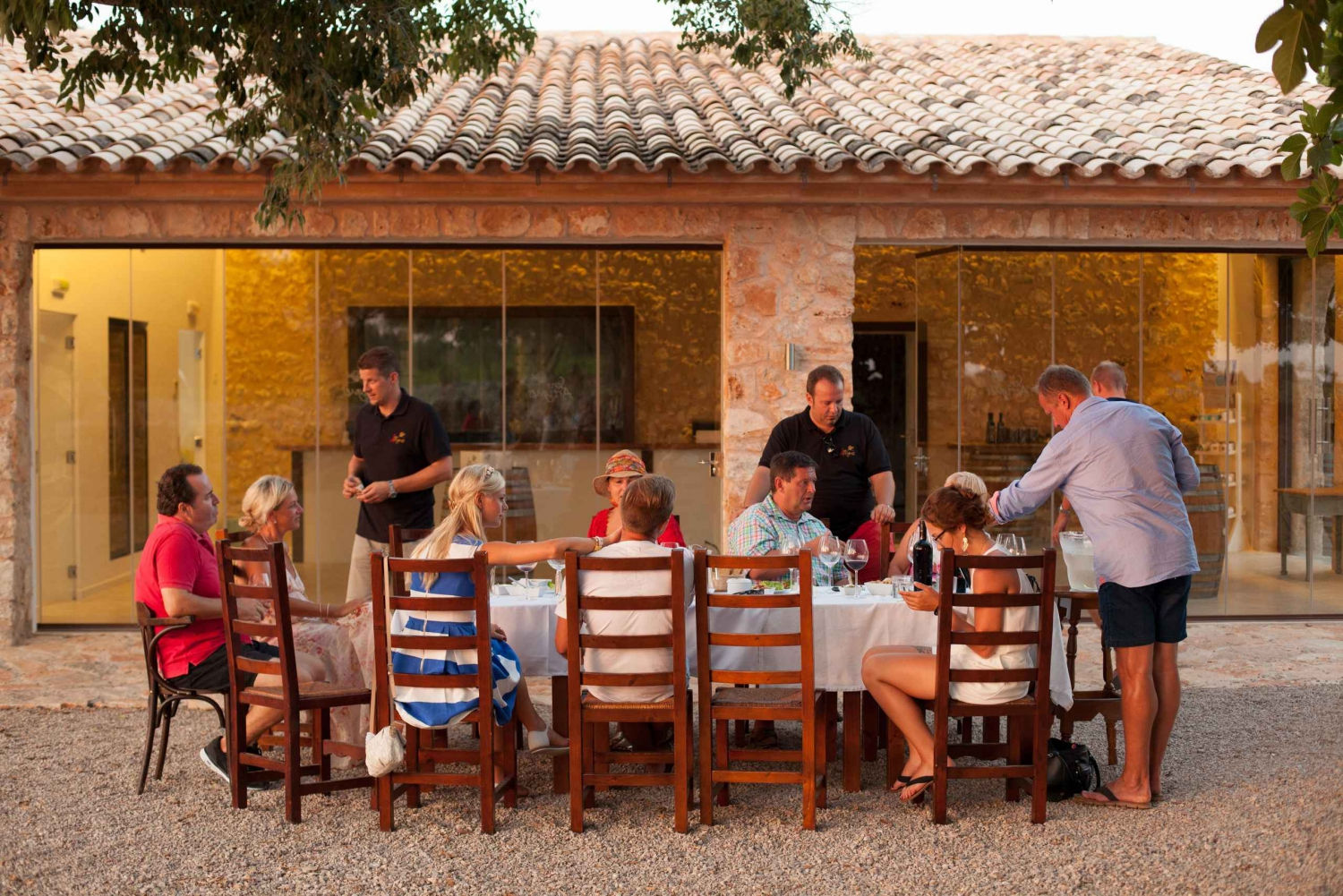 4-Hour Private Wine Tour with Tasting & Tapas