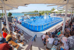 Admission Tickets for Marineland Mallorca
