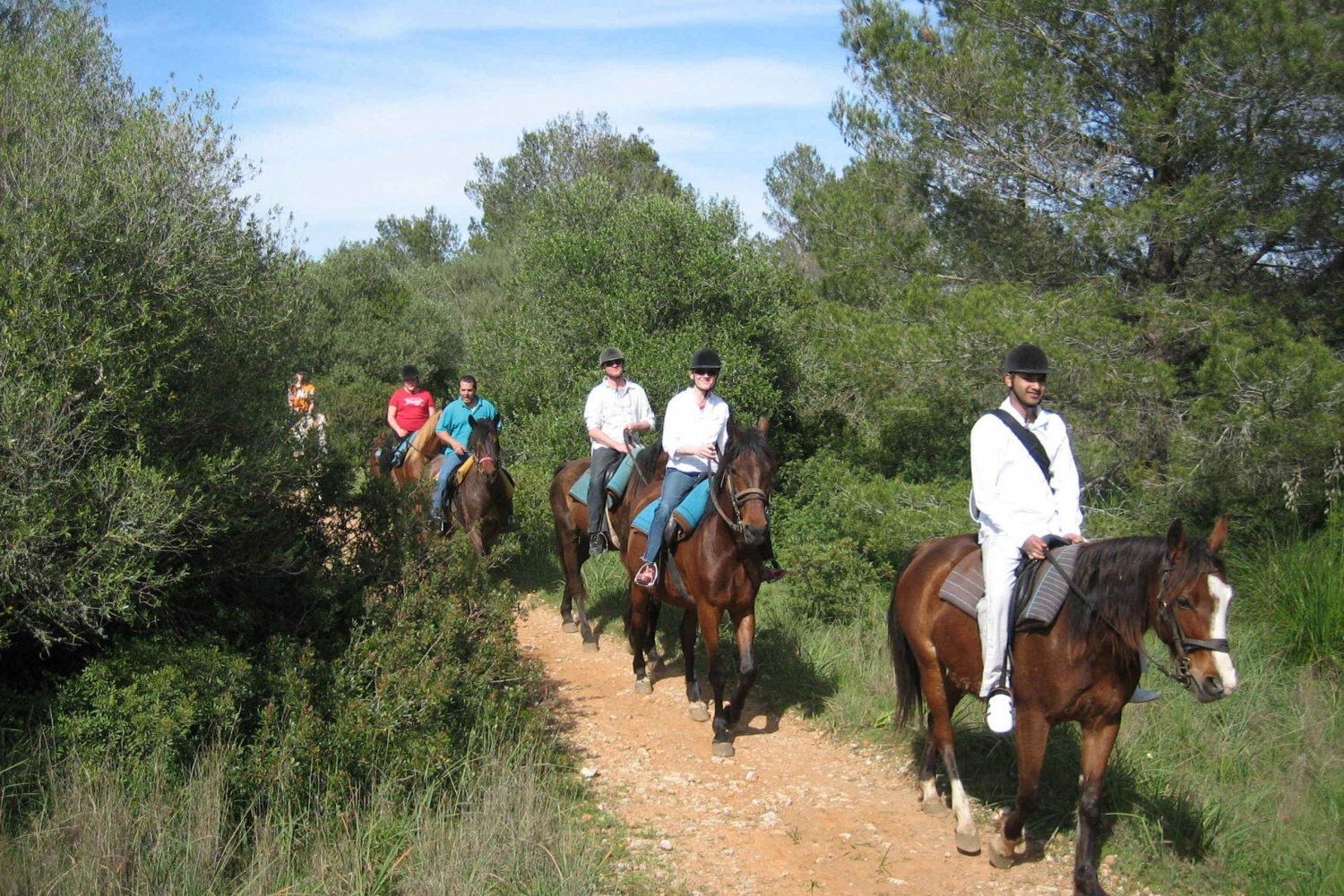 Alcudia: 2-Hour Guided Horseback Ride