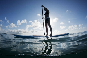 Bay of Palma: 2–Hour Stand Up Paddleboard