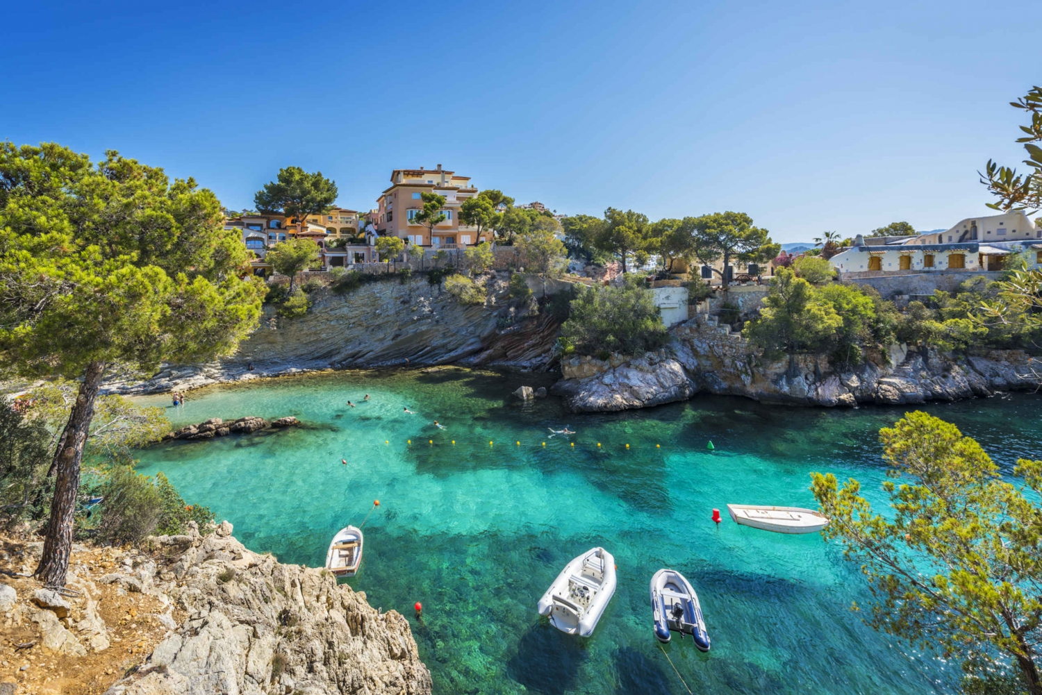 Caves, Cliffs and Coves Boat Cruise