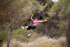 Forestal Park Family or Sport Course Adventure
