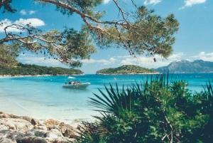 Formentor Beach & Lighthouse Cruise