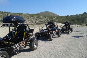 From Cala Millor: Half-Day Buggy Tour of Mallorca