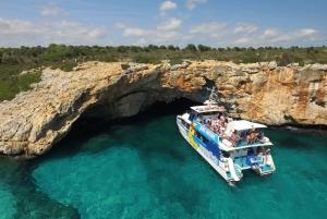 Glass-Bottom Catamaran Trip along the East Coast