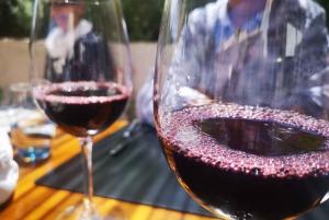 Majorca Winery Tour