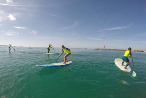 Mallorca: 1-Hour Stand-Up Paddleboard Lesson
