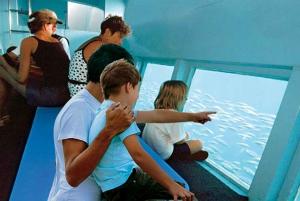 Mallorca: 2-hour Glass Bottom Boat Trip to Coll Baix