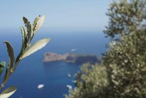 Mallorca: 5-Hour Hidden Marvels Tour