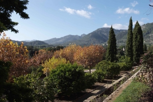 Mallorca: Campanet Caves Guided Tour